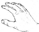 handloose